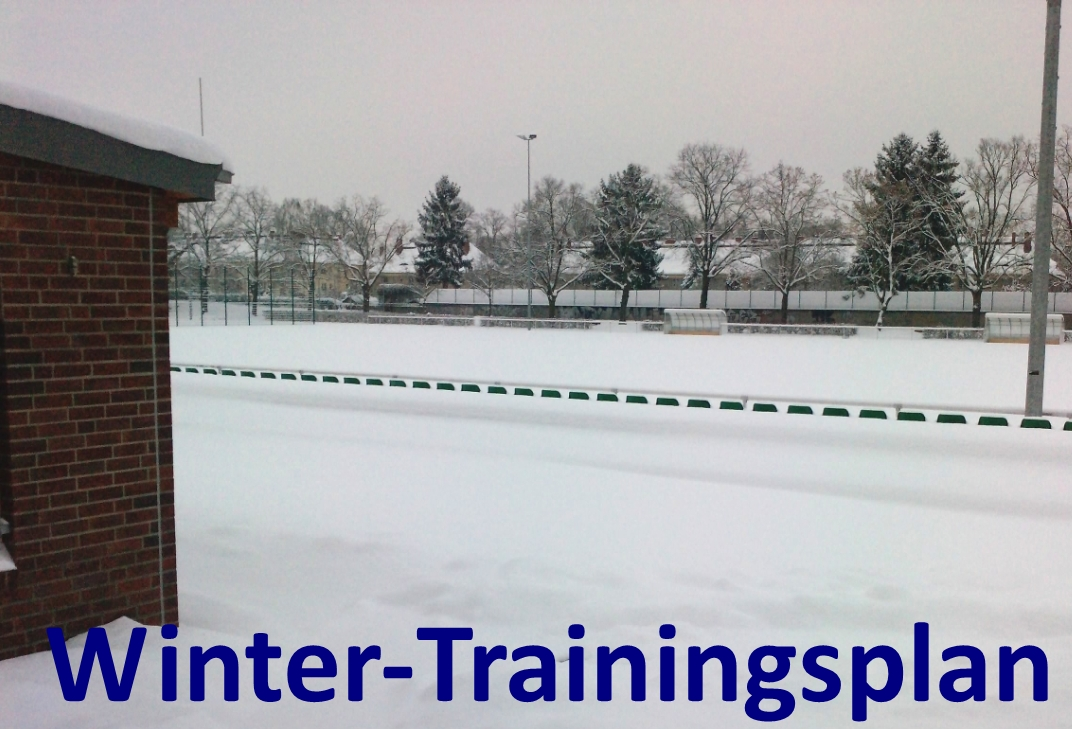 wintertrainingsplan-button